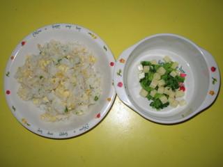 チャーハン&サラダ